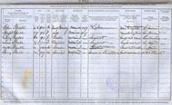 Irish census 1851