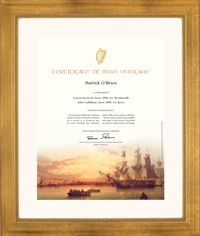 Official Certificate of Irish Heritage, framed.