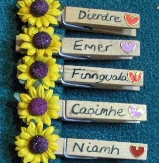 Traditional Irish girl names written on pegs.