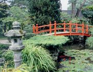 View of the Japanese Gardens in co Kildare