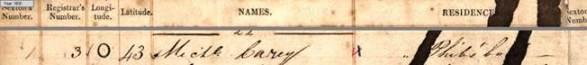Glasnevin death register entry of Michael Carey.