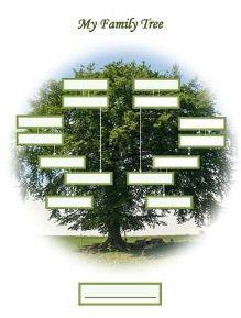 free printable blank family tree portrait shape