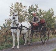 Pony and trap taking a stroll above Graigenamanagh, co. Kilkenny