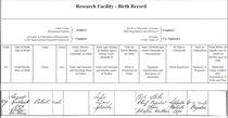 Patrick's birth certificate