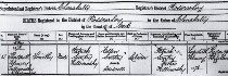 Tim's birth cert