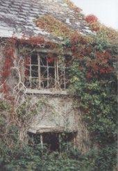 Abandoned cottage, Co Carlow, Ireland