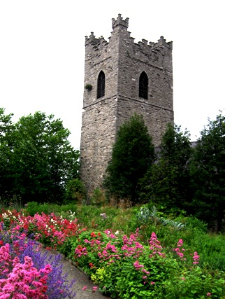 The tower of St Audeon's church in Dublin, with mid-summer plants in the foreground.