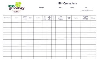 Blank transcription sheet for details extracted from 1901 Irish census returns.