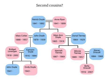 This family history chart explains 2nd cousins 1st cousins once the second cousin connection is actually quite simple the common ancestor is a great grandparent so in the family tree to the left betty driscoll and ccuart Image collections