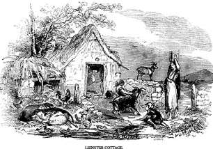 Early 19th century pen and ink drawing depicting the exterior of a rural cottage in Leinster. A woman carries a bucket of water on her head. Goats, chickens and pigs are in the yard.